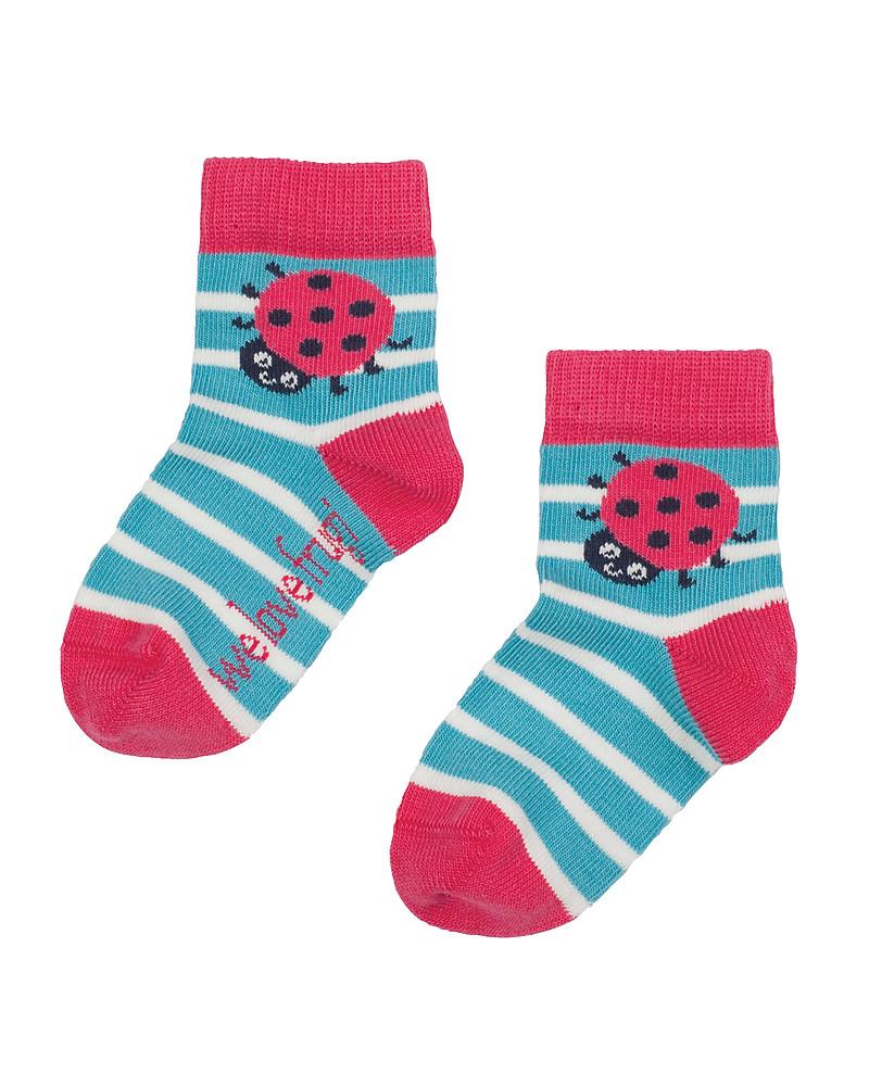 Sock Snob 6 Paia Bambino Cotone Colorate Disegni Divertenti Estivi Fantasie Calzini//Calze con Molti Disegni