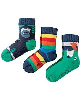 Frugi Calzini Rock My Socks, Pacco da 3 - Dinosauri - Cotone Elasticizzato Calzini