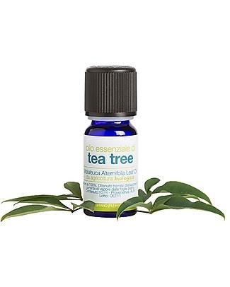 La Saponaria Olio Essenziale di Tea Tree Bio, 10 ml - Tonico e vitalizzante contro stress e depressione Creme e Olii
