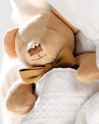 Maud N Lil DouDou Comforter in Cotone con Confezione Regalo! - Orsetto Miele - 100% Cotone Bio Doudou