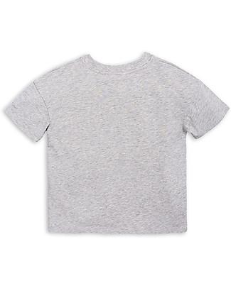 Mini Rodini T-Shirt Draco, Grigio/Giallo - Cotone bio T-Shirt e Canotte