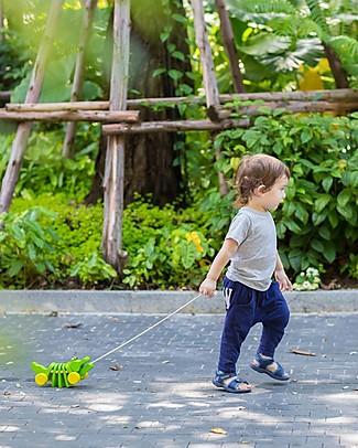 PlanToys Coccodrillo Click-Clack, Giocattolo da Tirare in Legno - Ecologico e divertente! Giochi da Tirare e Spingere