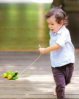 PlanToys Coccodrillo Click-Clack, Giocattolo da Tirare in Legno, Verde - Ecologico e divertente! Giochi da Tirare e Spingere