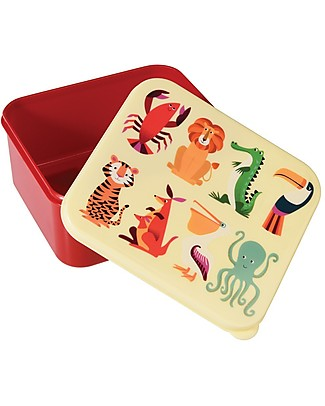 Rex London Contenitore Porta Pranzo, Creature Colorate - Senza BPA! Contenitori in Metallo