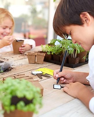 Sembra Mini Kit Orto Lattuga Meraviglia d'Estate - Pianta, cresci, raccogli la tua piantina! Scienza e Natura