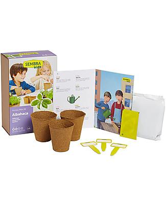 Sembra Mini Kit Orto Salvia - Pianta, cresci, raccogli la tua piantina! Scienza e Natura