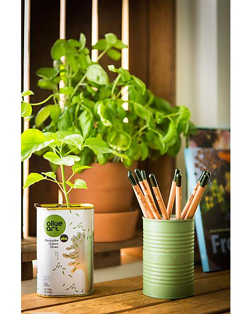 Sprout Matita Piantabile 100% Ecosostenibile - Basilico Colorare