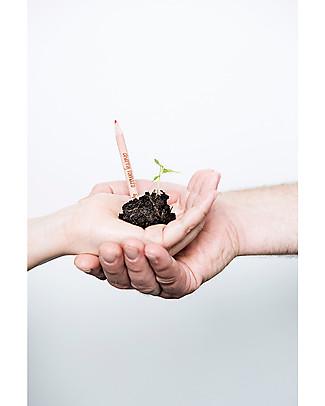 Sprout Matita Piantabile 100% Sostenibile - Girasole Colorare