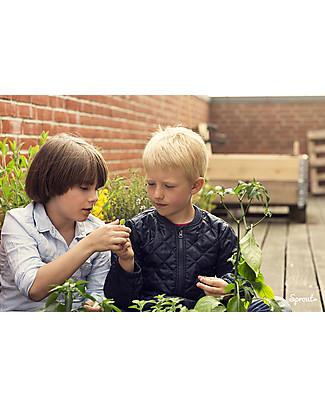Sprout Matita Piantabile 100% Sostenibile - Salvia Colorare