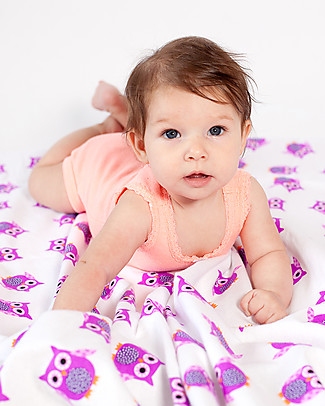 Zoocchini Set di 2 Copertine Baby in Morbida Flanella 100 x 100 cm, Gufetto/Viola – 100% cotone Coperte