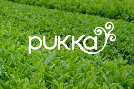 Vendita Pukka online