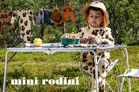 Vendita Mini Rodini online