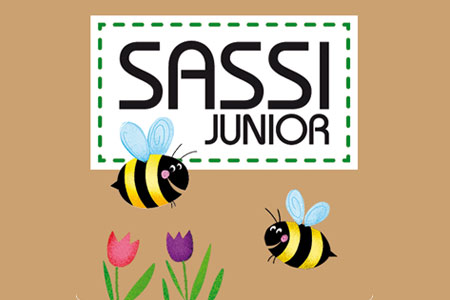 Vendita Sassi Junior online